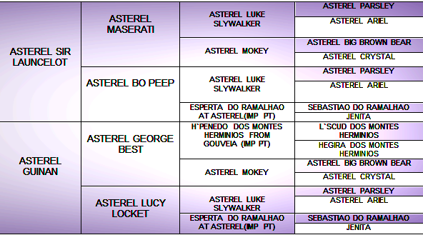 pedigree copy 1