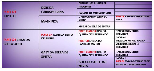 Xuva pedigree